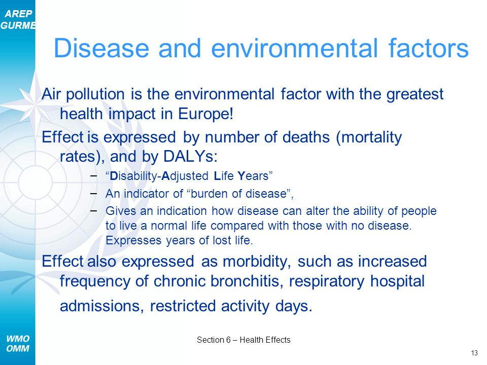 AREP GURME 13 Section 6 – Health Effects Disease and environmental factors Air pollution is the environmental factor with the greatest health impact i