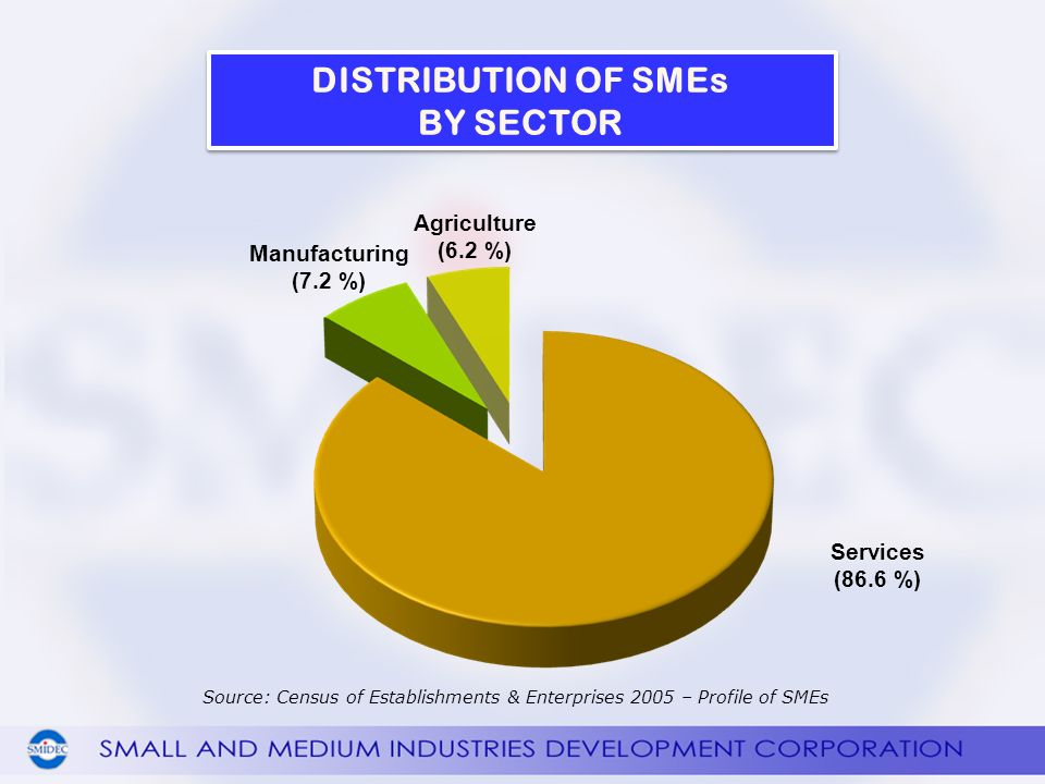 Services (86.6 %) Agriculture (6.2 %) Manufacturing (7.2 %) Source: Census of Establishments & Enterprises 2005 – Profile of SMEs DISTRIBUTION OF SMEs BY SECTOR DISTRIBUTION OF SMEs BY SECTOR
