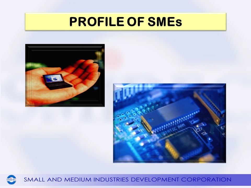 PROFILE OF SMEs