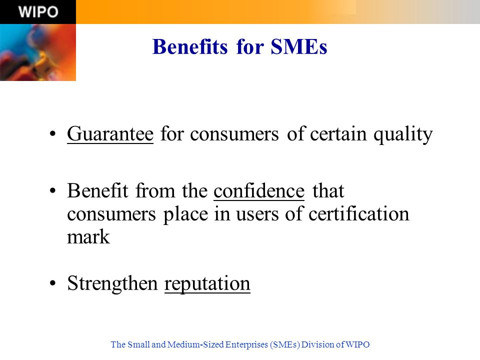 The Small and Medium-Sized Enterprises (SMEs) Division of WIPO Benefits for SMEs Guarantee for consumers of certain quality Benefit from the confidence that consumers place in users of certification mark Strengthen reputation