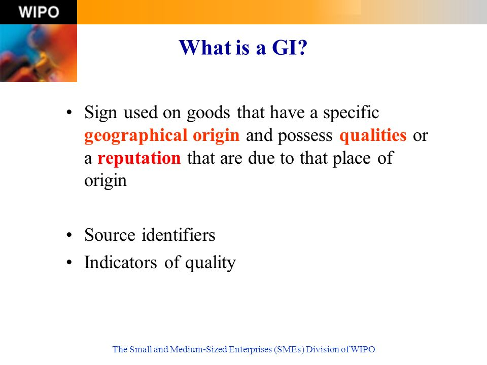 The Small and Medium-Sized Enterprises (SMEs) Division of WIPO What is a GI.