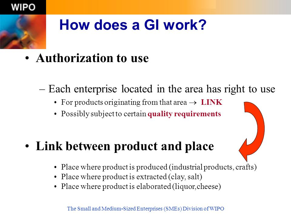 The Small and Medium-Sized Enterprises (SMEs) Division of WIPO Authorization to use –Each enterprise located in the area has right to use For products originating from that area LINK Possibly subject to certain quality requirements How does a GI work.