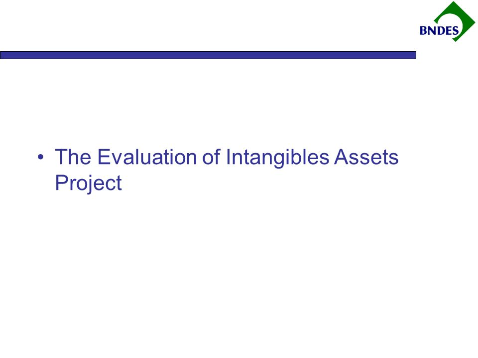 The Evaluation of Intangibles Assets Project