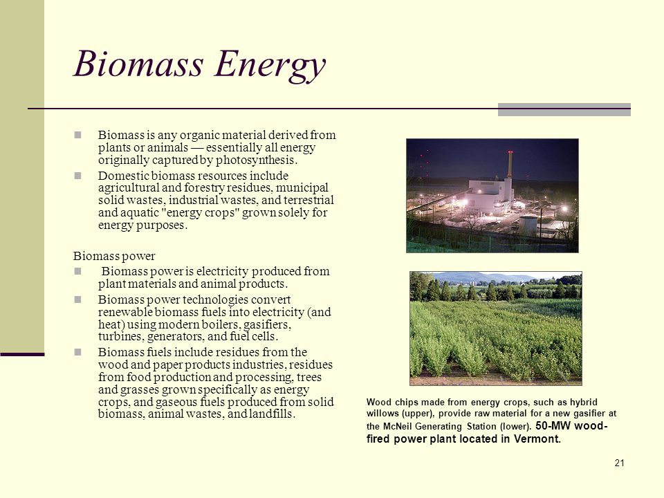 21 Biomass Energy Biomass is any organic material derived from plants or animals essentially all energy originally captured by photosynthesis.