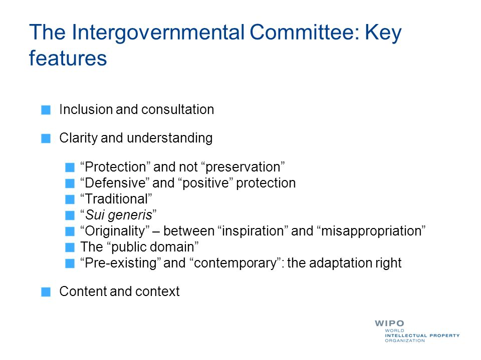 The Intergovernmental Committee: Key features Inclusion and consultation Clarity and understanding Protection and not preservation Defensive and posit