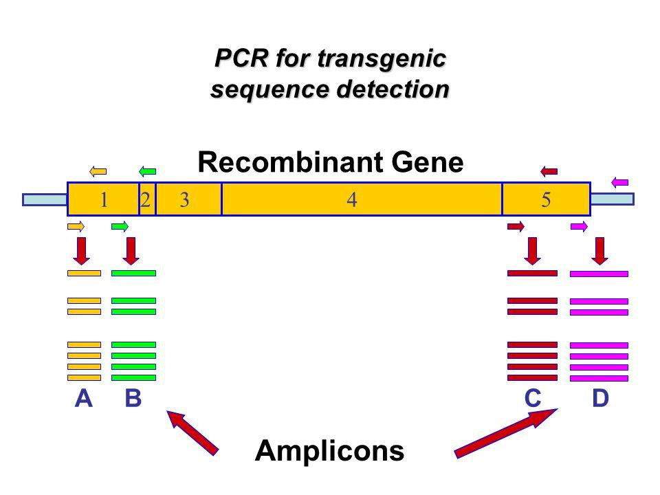1.Exploration 2. Gene specific target 3. Specific construct 4.