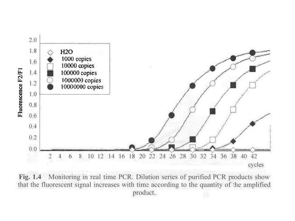 Quantitative PCR qPCR – RTQ-PCR