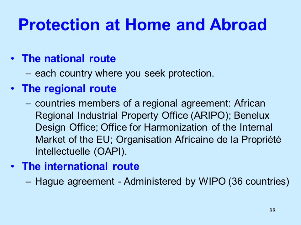 88 Protection at Home and Abroad The national route –each country where you seek protection. The regional route –countries members of a regional agree