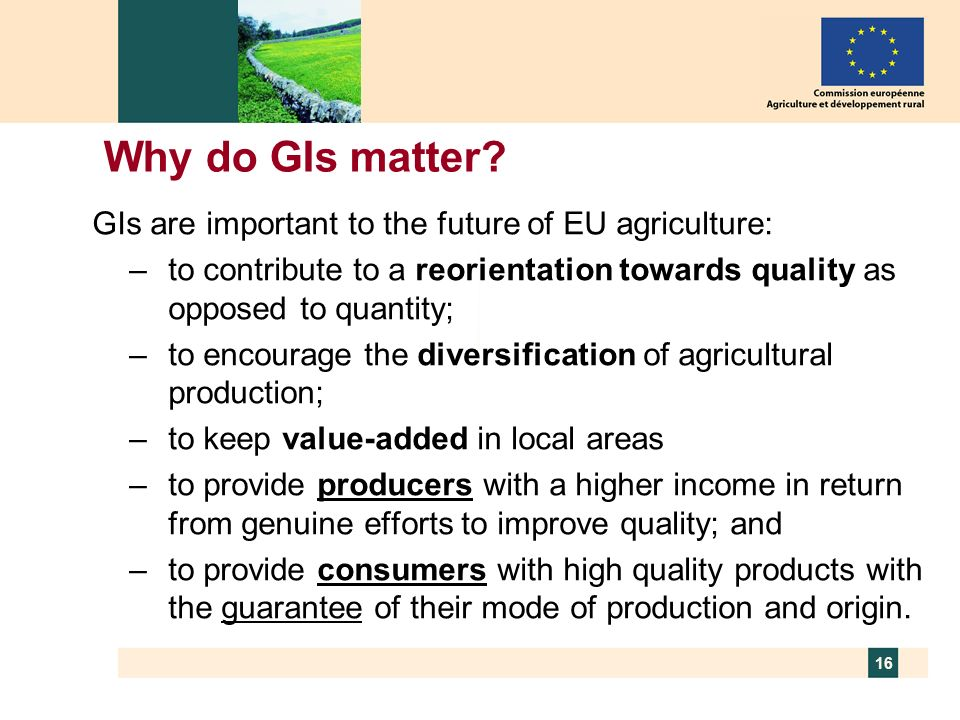 16 Why do GIs matter? GIs are important to the future of EU agriculture: –to contribute to a reorientation towards quality as opposed to quantity; –to