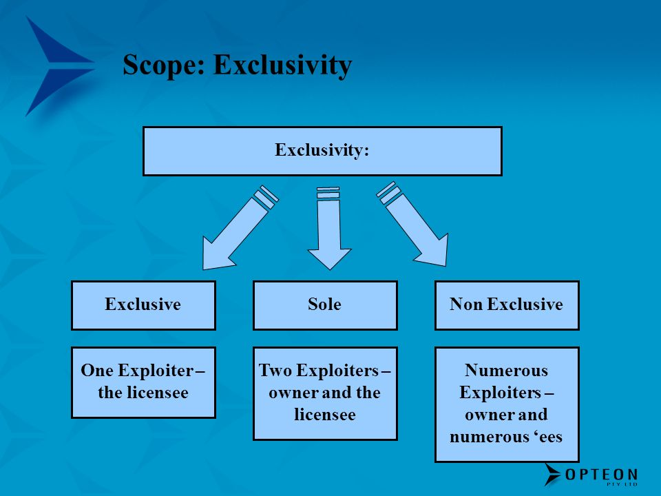 Scope: Exclusivity ExclusiveSole Exclusivity: Non Exclusive One Exploiter – the licensee Two Exploiters – owner and the licensee Numerous Exploiters –