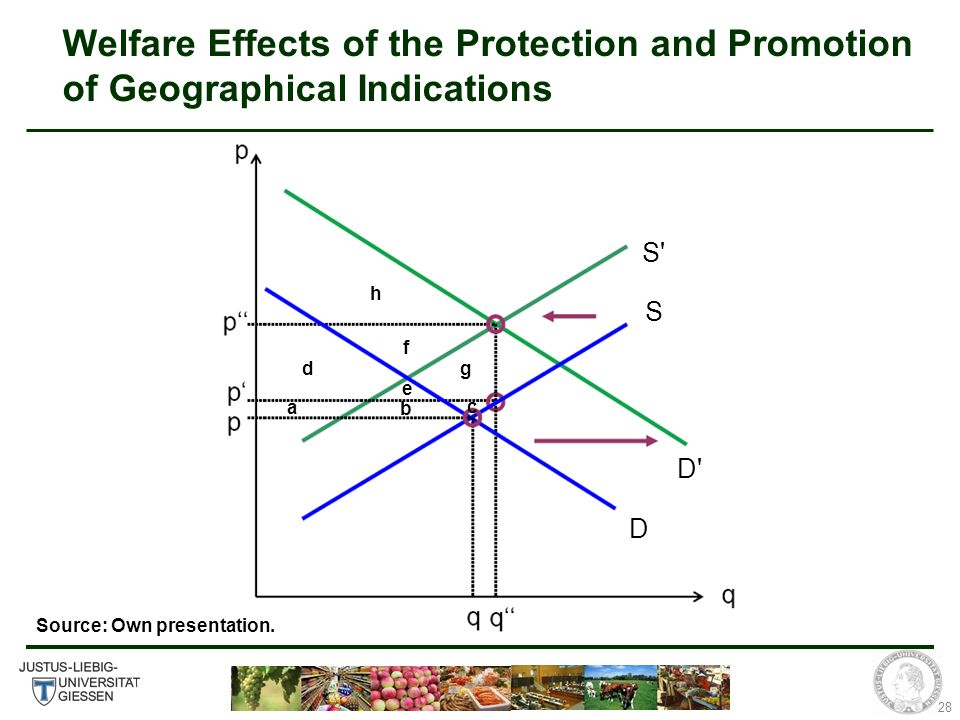 28 Welfare Effects of the Protection and Promotion of Geographical Indications S S D D h a b c d e f g Source: Own presentation.
