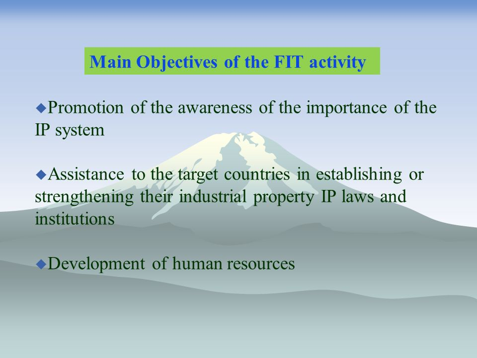 Promotion of the awareness of the importance of the IP system Assistance to the target countries in establishing or strengthening their industrial property IP laws and institutions Development of human resources Main Objectives of the FIT activity