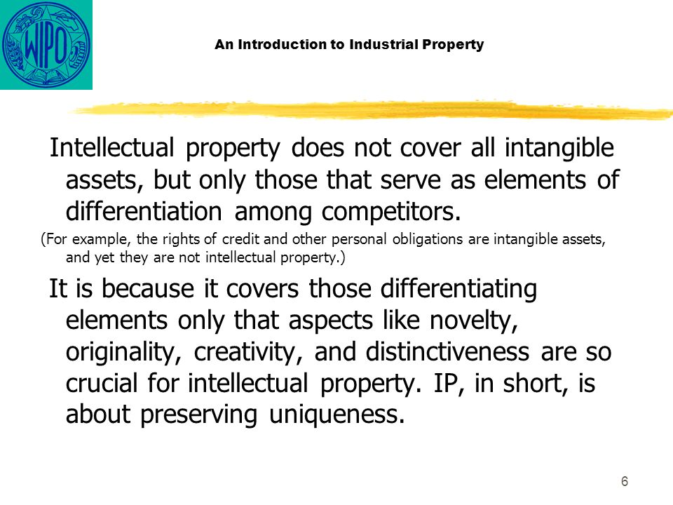 6 An Introduction to Industrial Property Intellectual property does not cover all intangible assets, but only those that serve as elements of differentiation among competitors.