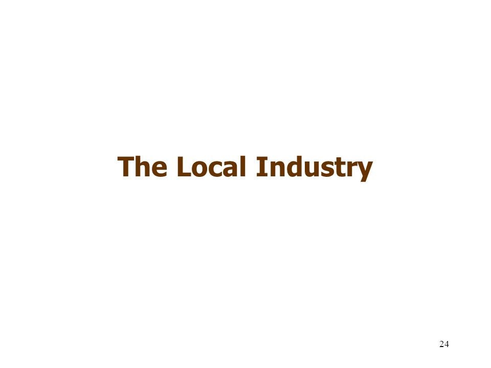 24 The Local Industry