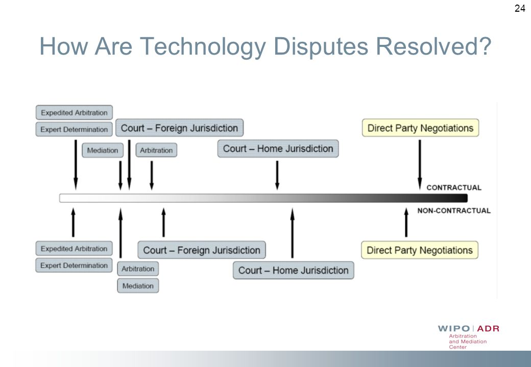 24 How Are Technology Disputes Resolved?