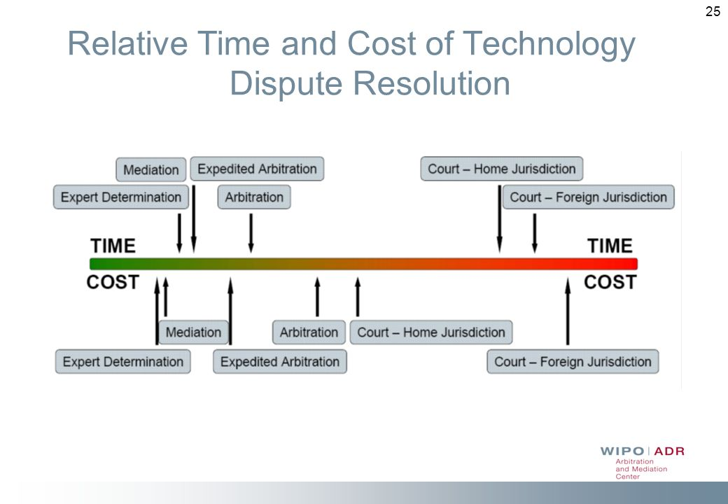 25 Relative Time and Cost of Technology Dispute Resolution