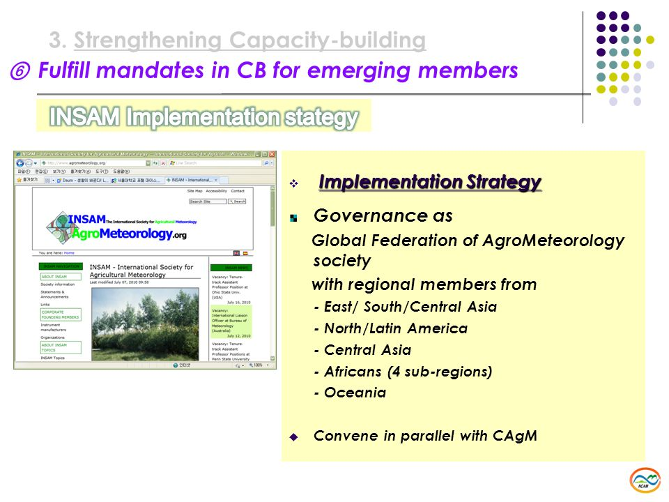 Fulfill mandates in CB for emerging members 3.Strengthening Capacity-building Implementation Strategy Implementation Strategy Governance as Global Fed