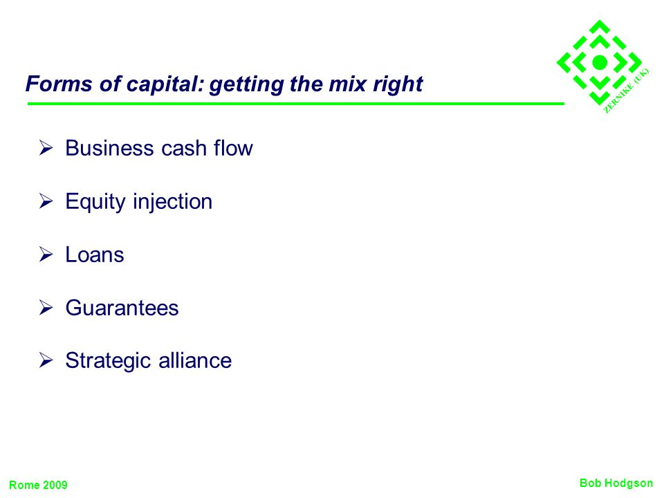 ZERNIKE (UK) Forms of capital: getting the mix right Business cash flow Equity injection Loans Guarantees Strategic alliance Bob Hodgson Rome 2009