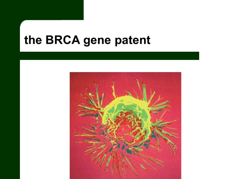 the BRCA gene patent