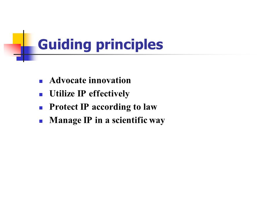 Guiding principles Advocate innovation Utilize IP effectively Protect IP according to law Manage IP in a scientific way