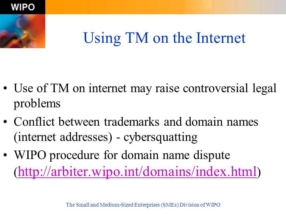 The Small and Medium-Sized Enterprises (SMEs) Division of WIPO Using TM on the Internet Use of TM on internet may raise controversial legal problems C