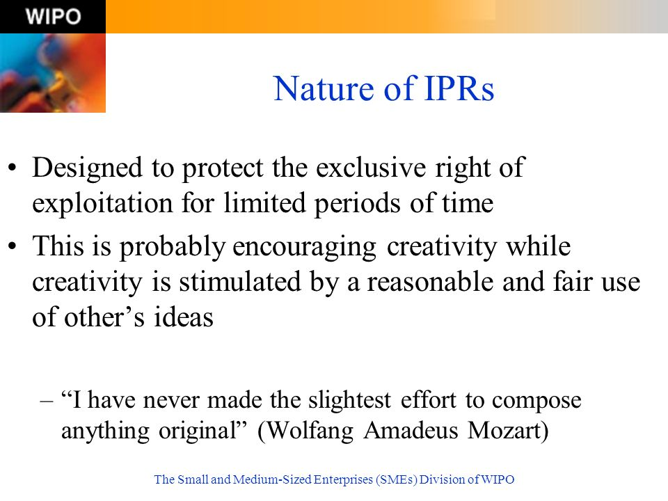 The Small and Medium-Sized Enterprises (SMEs) Division of WIPO Nature of IPRs Designed to protect the exclusive right of exploitation for limited peri