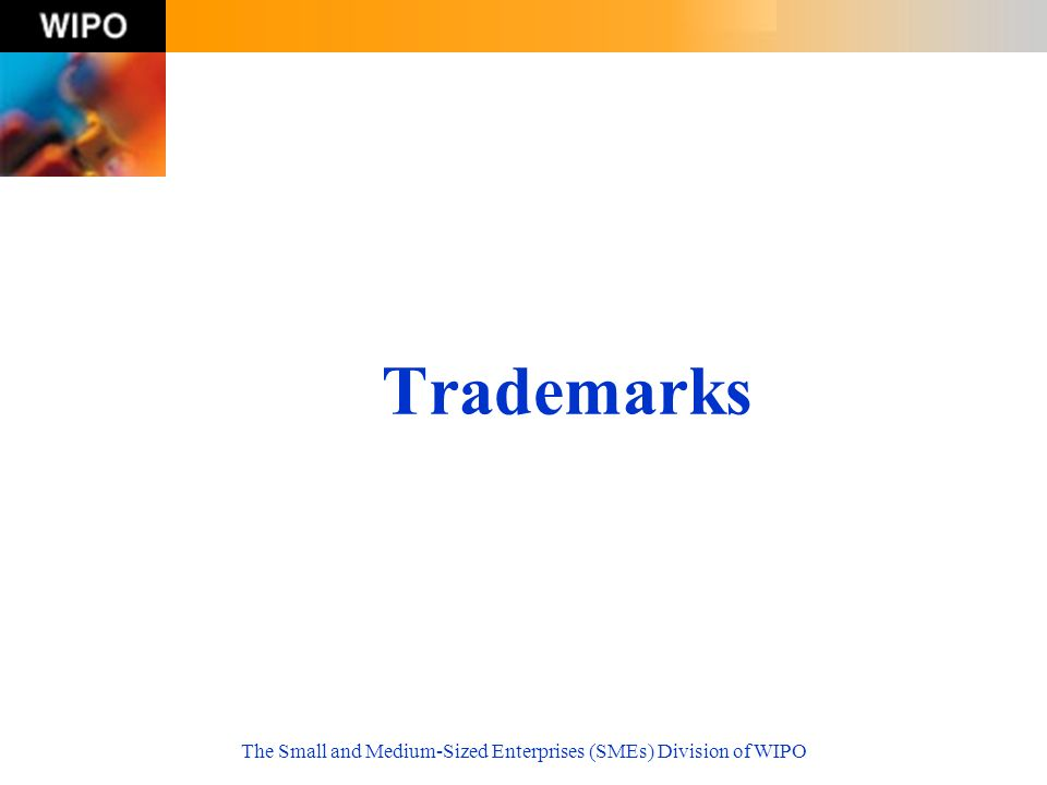 The Small and Medium-Sized Enterprises (SMEs) Division of WIPO Trademarks