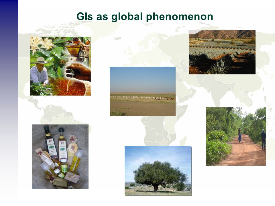 GIs as global phenomenon