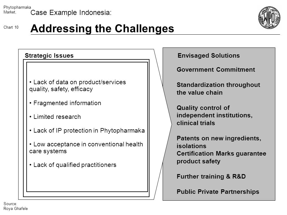 Phytopharmaka Market, Chart 10 Addressing the Challenges Source: Roya Ghafele Case Example Indonesia: Envisaged Solutions Government Commitment Standardization throughout the value chain Quality control of independent institutions, clinical trials Patents on new ingredients, isolations Certification Marks guarantee product safety Further training & R&D Public Private Partnerships Lack of data on product/services quality, safety, efficacy Fragmented information Limited research Lack of IP protection in Phytopharmaka Low acceptance in conventional health care systems Lack of qualified practitioners Strategic Issues