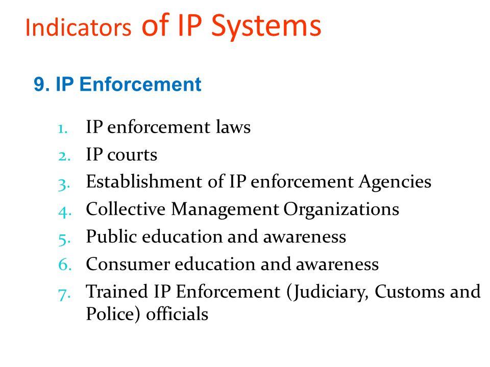 1. IP enforcement laws 2. IP courts 3. Establishment of IP enforcement Agencies 4.