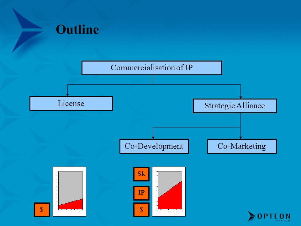 Outline Commercialisation of IP License Strategic Alliance Co-DevelopmentCo-Marketing $$ IP Sk