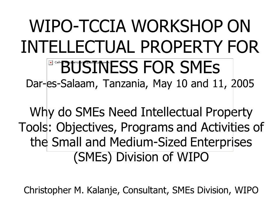 WIPO-TCCIA WORKSHOP ON INTELLECTUAL PROPERTY FOR BUSINESS FOR SMEs Dar-es-Salaam, Tanzania, May 10 and 11, 2005 Why do SMEs Need Intellectual Property Tools: Objectives, Programs and Activities of the Small and Medium-Sized Enterprises (SMEs) Division of WIPO Christopher M.