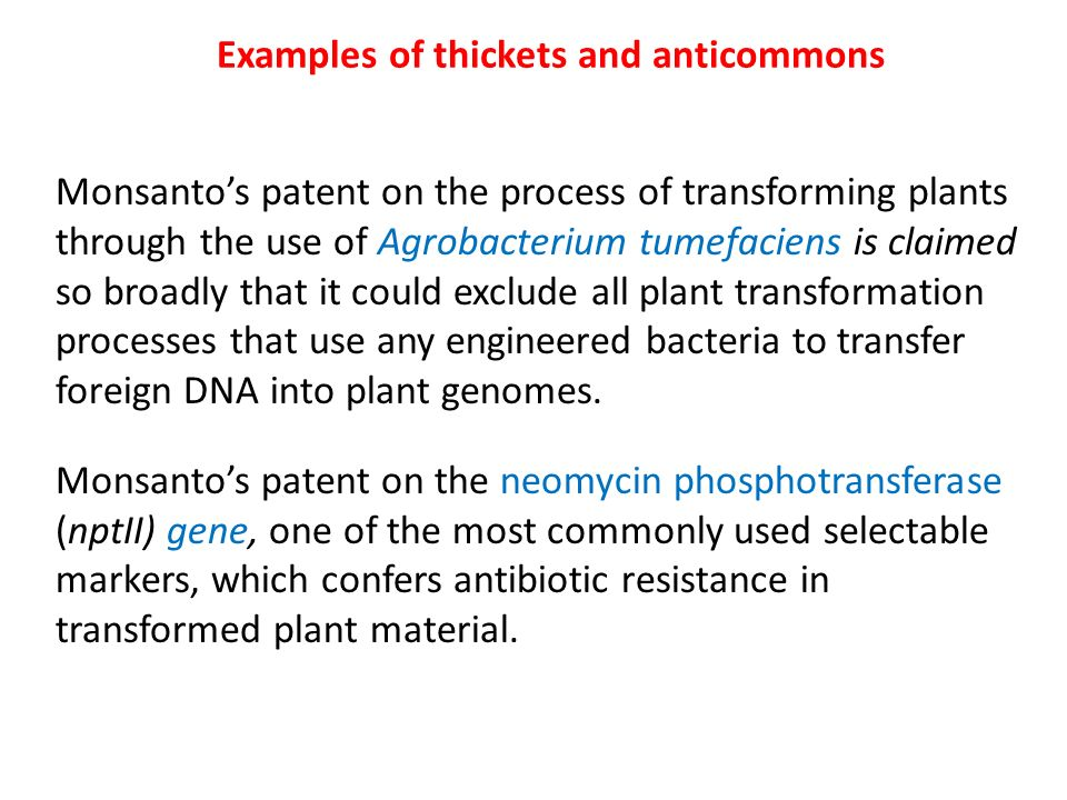 Examples of thickets and anticommons Monsantos patent on the process of transforming plants through the use of Agrobacterium tumefaciens is claimed so broadly that it could exclude all plant transformation processes that use any engineered bacteria to transfer foreign DNA into plant genomes.