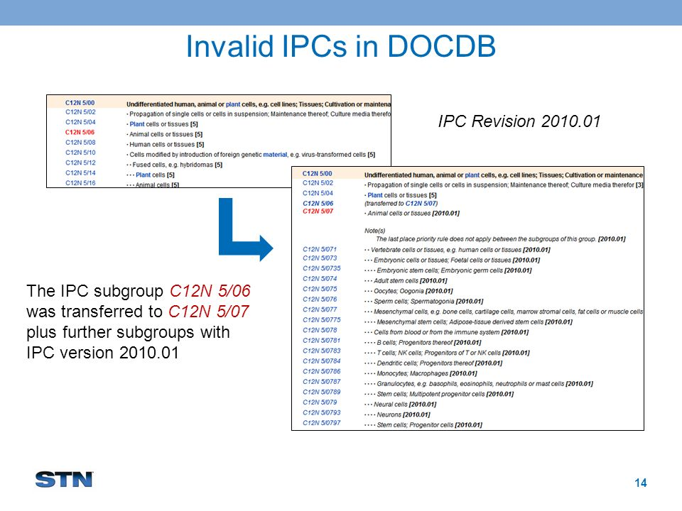 Invalid IPCs in DOCDB 14 The IPC subgroup C12N 5/06 was transferred to C12N 5/07 plus further subgroups with IPC version 2010.01 IPC Revision 2010.01