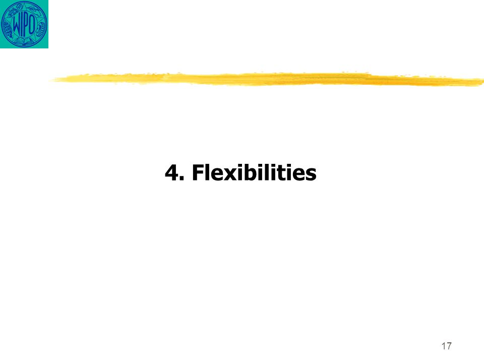 17 4. Flexibilities
