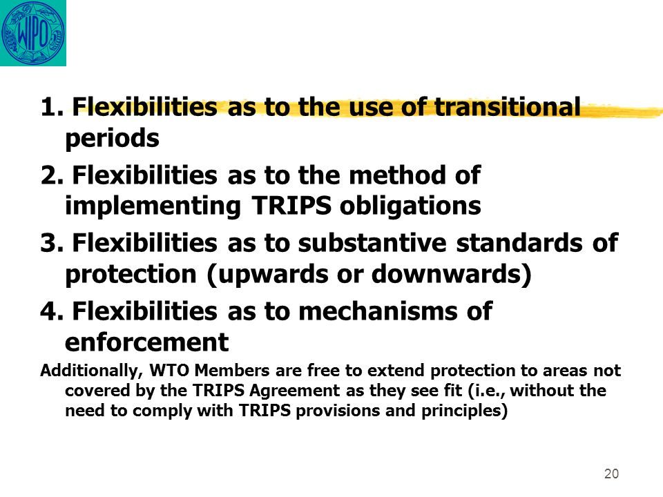 20 1. Flexibilities as to the use of transitional periods 2. Flexibilities as to the method of implementing TRIPS obligations 3. Flexibilities as to s