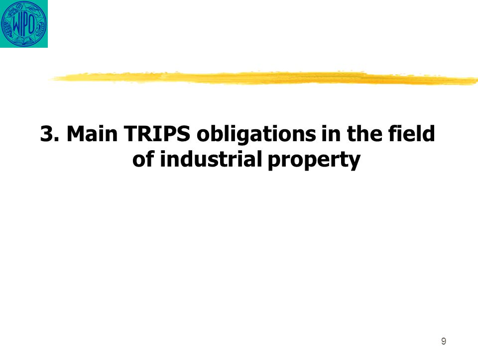 9 3. Main TRIPS obligations in the field of industrial property