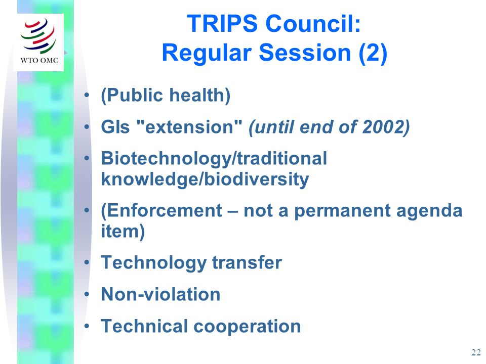 22 (Public health) GIs extension (until end of 2002) Biotechnology/traditional knowledge/biodiversity (Enforcement – not a permanent agenda item) Technology transfer Non-violation Technical cooperation TRIPS Council: Regular Session (2)