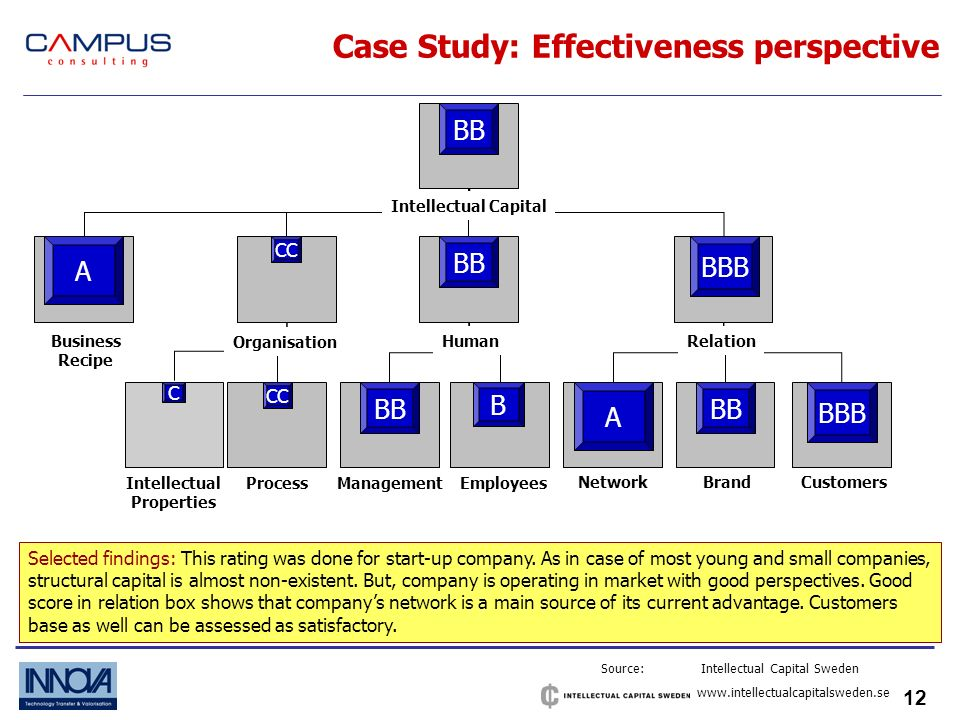 12 Case Study: Effectiveness perspective Source: Intellectual Capital Sweden   ProcessManagement Employees NetworkBrandCustomers HumanRelation Organisation Business Recipe Intellectual Properties Intellectual Capital A BBB BB CC A BB B CC C BBB Selected findings: This rating was done for start-up company.