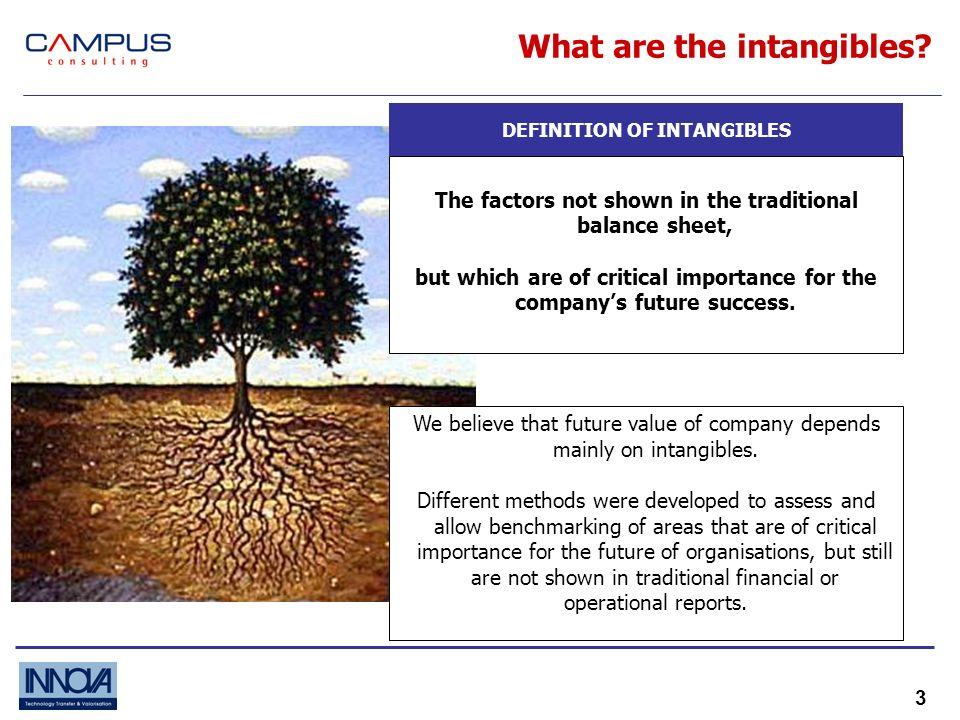 3 What are the intangibles.
