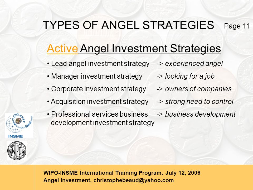 WIPO-INSME International Training Program, July 12, 2006 Angel Investment, christophebeaud@yahoo.com TYPES OF ANGEL STRATEGIES Active Angel Investment Strategies Lead angel investment strategy-> experienced angel Manager investment strategy-> looking for a job Corporate investment strategy-> owners of companies Acquisition investment strategy-> strong need to control Professional services business-> business development development investment strategy Page 11