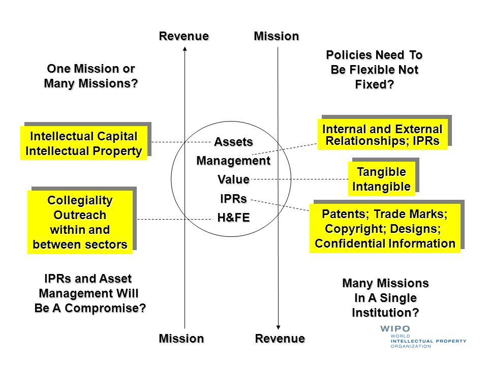 AssetsManagementValueIPRsH&FE Intellectual Capital Intellectual Property Intellectual Capital Intellectual Property Internal and External Relationship