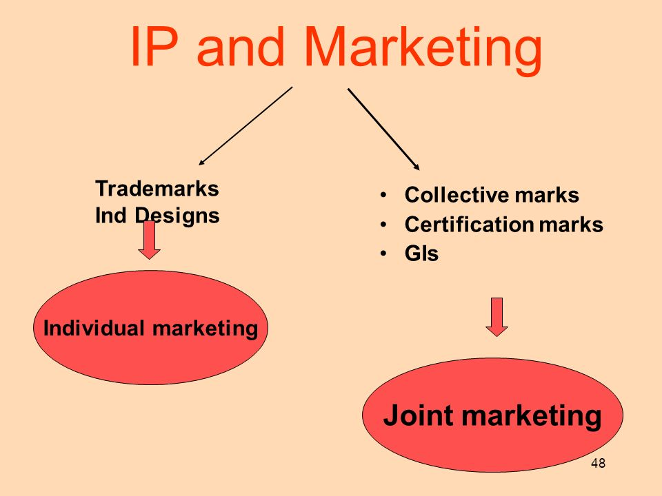 48 IP and Marketing Collective marks Certification marks GIs Trademarks Ind Designs Individual marketing Joint marketing