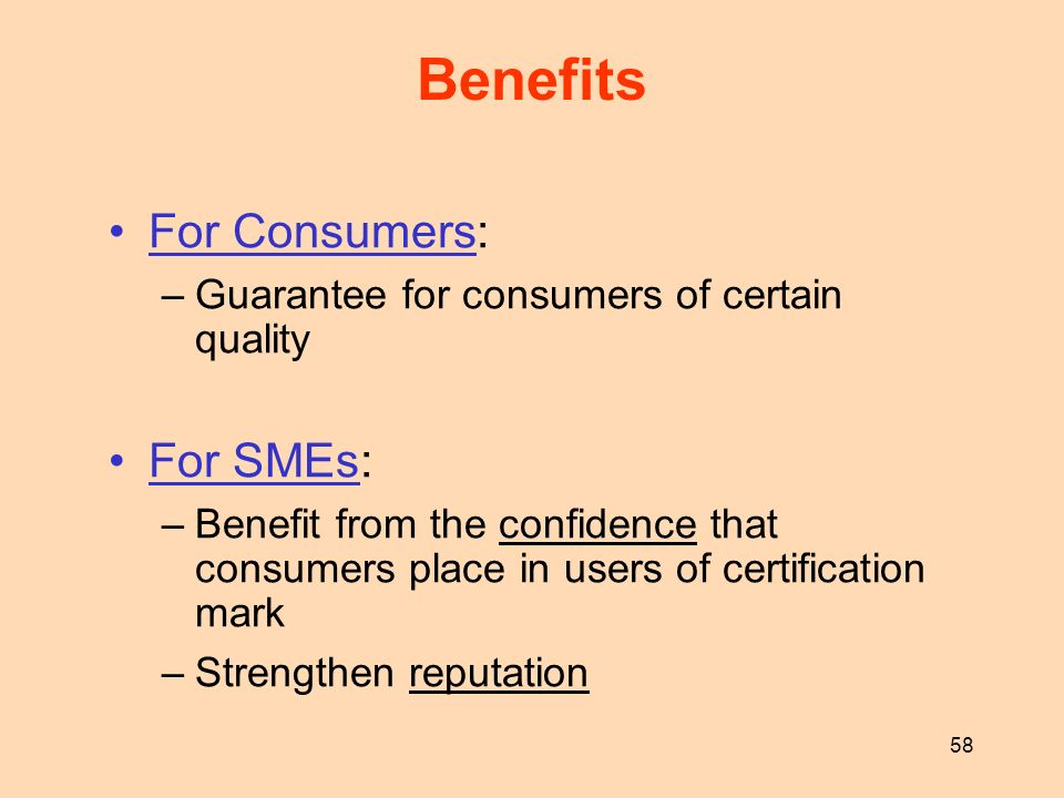58 Benefits For Consumers: –Guarantee for consumers of certain quality For SMEs: –Benefit from the confidence that consumers place in users of certifi