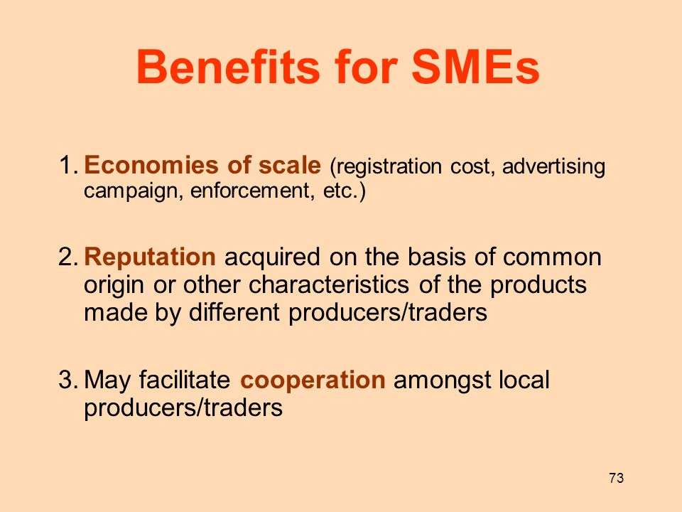 73 Benefits for SMEs 1.Economies of scale (registration cost, advertising campaign, enforcement, etc.) 2.Reputation acquired on the basis of common or
