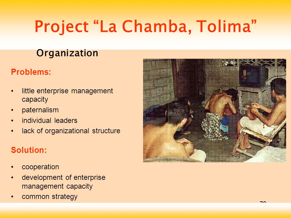 79 Project La Chamba, Tolima Problems: little enterprise management capacity paternalism individual leaders lack of organizational structure Solution: