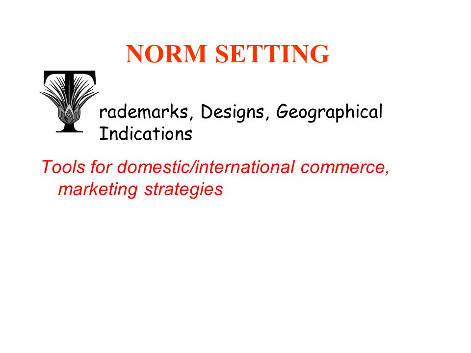 NORM SETTING Tools for domestic/international commerce, marketing strategies Develop intl TM law (TLT Revision) Legal advice Promote convergence of ad