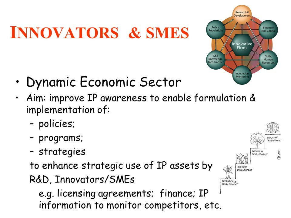I NNOVATORS & SMES Dynamic Economic Sector Aim: improve IP awareness to enable formulation & implementation of: –policies; –programs; –strategies to e