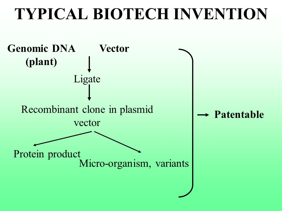 TYPICAL BIOTECH INVENTION Genomic DNA (plant) Ligate Protein product Recombinant clone in plasmid vector Micro-organism, variants Patentable Vector