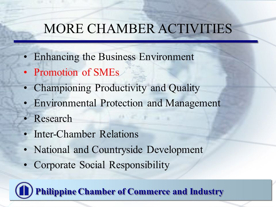 MORE CHAMBER ACTIVITIES Enhancing the Business Environment Promotion of SMEs Championing Productivity and Quality Environmental Protection and Management Research Inter-Chamber Relations National and Countryside Development Corporate Social Responsibility Philippine Chamber of Commerce and Industry